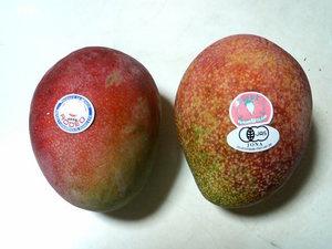 20070815_mango1.JPG
