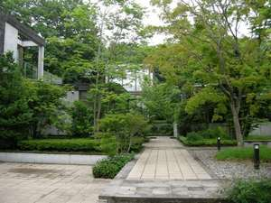 20080706_niki3.jpg
