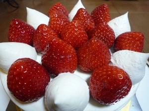 20081215_s-cake1.jpg