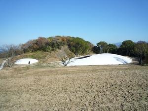 20101204_teshima1.JPG
