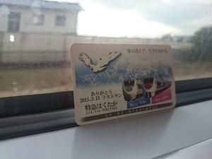 20150305_hakutaka1.JPG